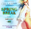 Spring Break Party at The Bryant Park Hotel Saturday party